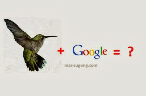 Hummingbird Name Newest Google Algorithm