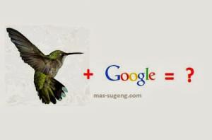 Hummingbird Name Newest Google Algorithm